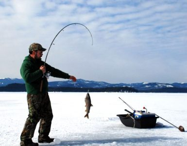Best Fishfinder for Ice Fishing Reviews