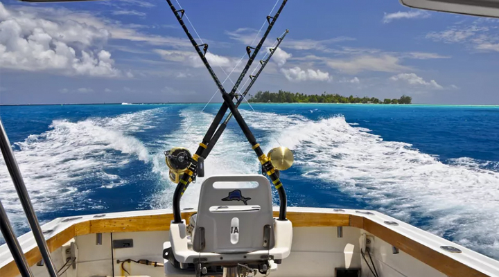 Tips and Tricks On Fishing