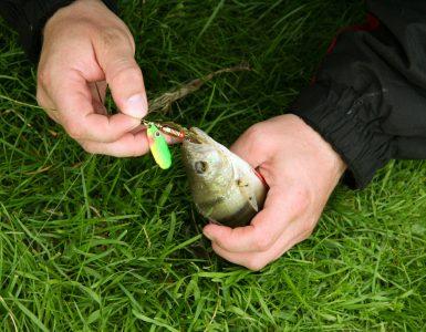 kind sport fisherman